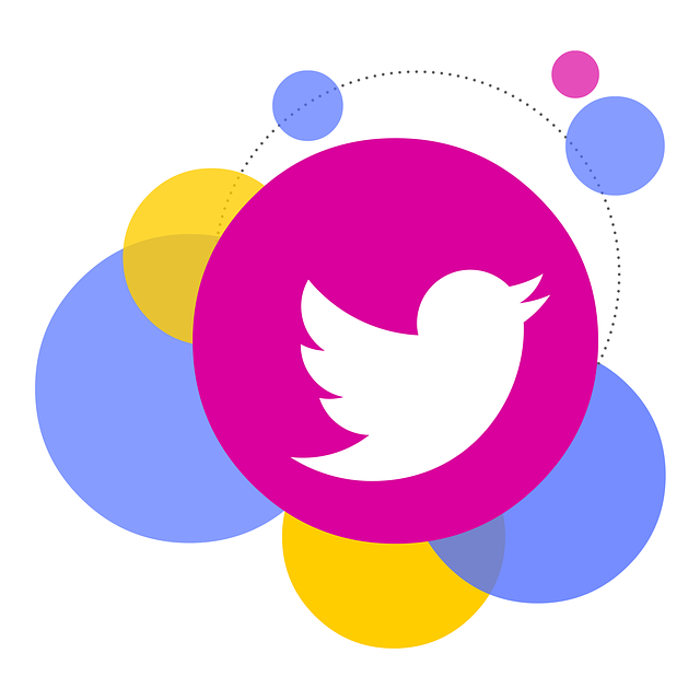 gestione-pagina-twiter-aziendale-torino